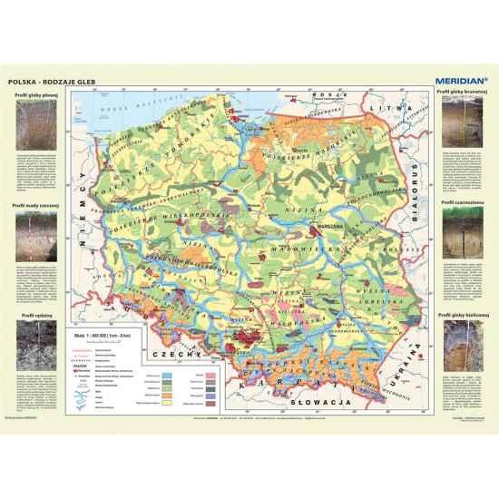 Mapa Polski Polska Rodzaje Gleb Gleby Mer206 249 00 Pln